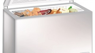 chest freezer-frozen foods