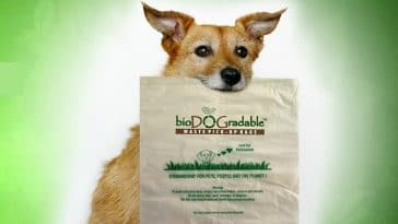 bioDOGradable dog waste bag