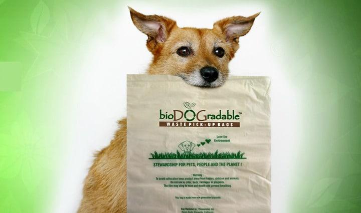 bioDOGradable dog waste bag