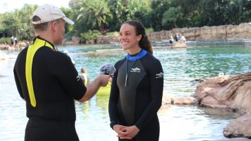 sea world discovery cove interview